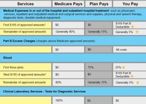 Benefit Chart Plan L