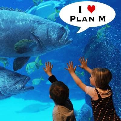 Fishing Loving Plan M